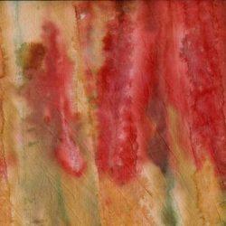 Marcus fabrics Red